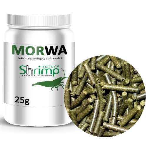 Shrimp Nature Morwa