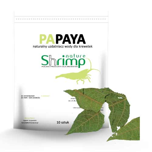 Shrimp Nature Papaya liście